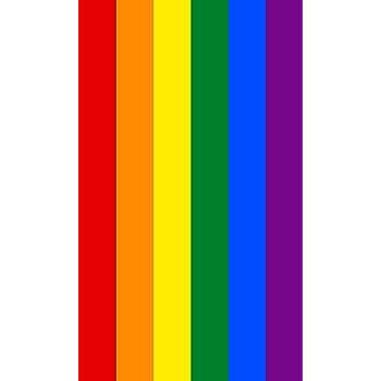 DHestia. Toalla de Playa Grande LGTB de Algodón 100x170 cm. Rainbow - Arcoiris: Amazon.es: Hogar