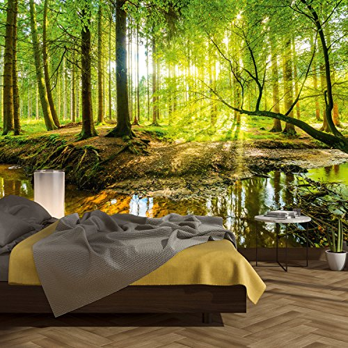 murimage Photo Wallpaper Forest 366 x 254 cm Including Paste Wall Mural wood Foliage Trees Sunlight Nature livingroom