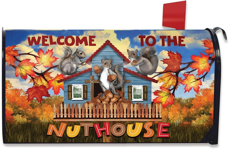 Ranking TOP14 Briarwood Atlanta Mall Lane Nuthouse Fall Magnetic Cover Autu Mailbox Welcome