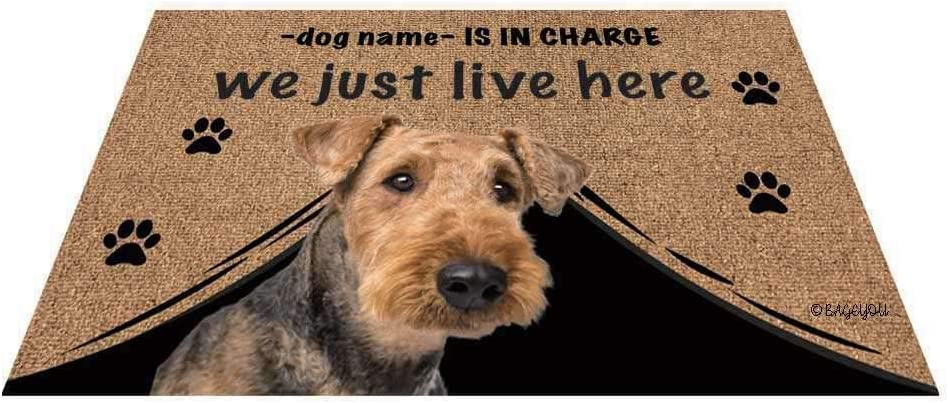 BAGEYOU All stores New item are sold Personalized Dog's Name Doormat Love Dog Airedal with My
