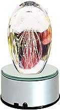 Xuanshengjia Kwallen Licht, 3D Crystal Kwallen beeldjes Romantische Nachtlampje, Gekleurde Crystal Nachtlampje Geschenken ...