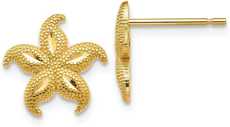 Beautiful Yellow gold 14K Yellowgold 14 gold Polished & Textured Starfish Post Earrings