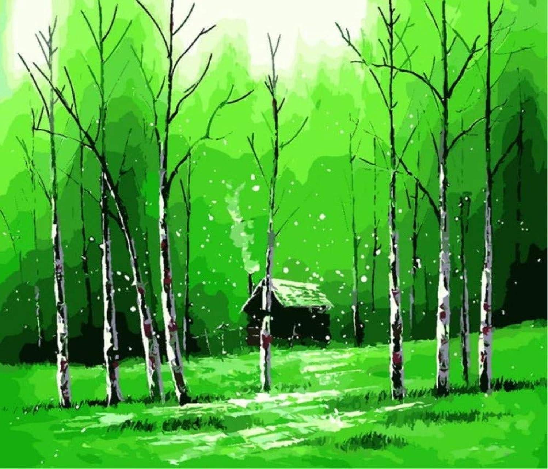 Paint by Number Kits DIY Spring Grün Trees Snow Forest for Adult Kid Gift 40x50cm with Combination Frame B07PMZF46V | Die erste Reihe von umfassenden Spezifikationen für Kunden
