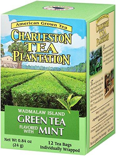 American Classic Pyramid Teabags, Island Green Mint, 12 Count, 0.84 Oz