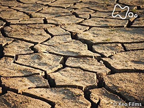 「デイ・ゼロ 地球から水がなくなる日」