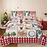 WONGS BEDDING Tagesdecke 220x240 cm Bettüberwurf Steppdecke Doppelbett gesteppt Mikrofaser 3 teilig Weihnachts Tagesdecke Bettdecke Stepp Decke mit 2 Kissenbezüge 50 x 70cm