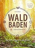 Waldbaden im Jahreskreis: Das Jahr im Rhythmus des Waldes - Ulli Felber