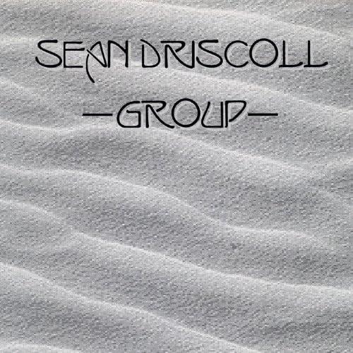 Sean Driscoll Group
