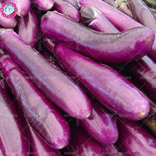 11.11 Big Promotion! 100 pcs/lot géant graines d'aubergine violet jardin graine légume vert et maison plante herbe organique 2