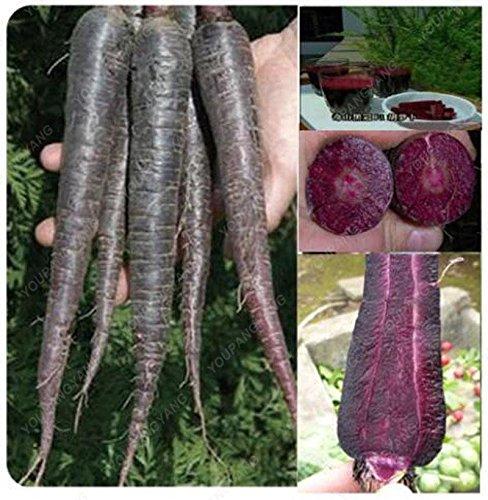 100 graines / l'unité Heirloom arc-en-Blanc Jaune Orange Violet Rouge carotte mélange de graines de légumes délicieux Graines de Bonsai légumes Jaune