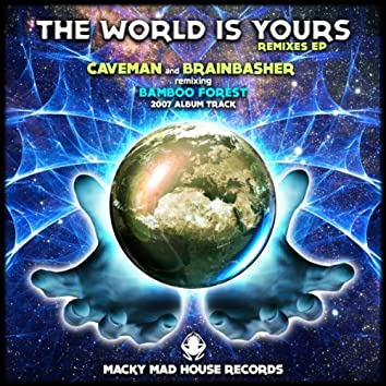 The World Is Yours - 2014 The Remixes