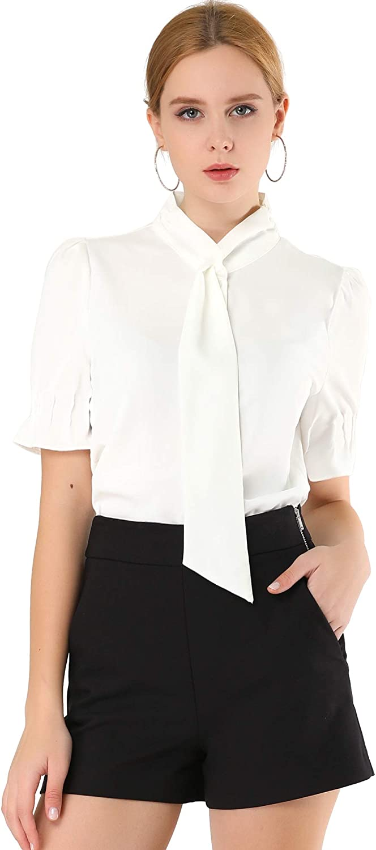 Allegra K Women's Work Office Blouse Button Down Puff Sleeve Tie Neck Top Shirt