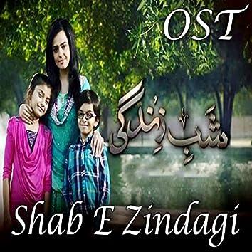 """Shab E Zindagi (From """"Shab E Zindagi"""")"""