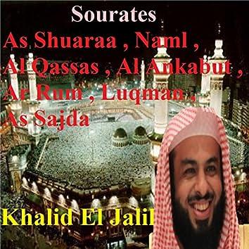 Sourates As Shuaraa, Naml, Al Qassas, Al Ankabut, Ar Rum, Luqman, As Sajda (Quran)