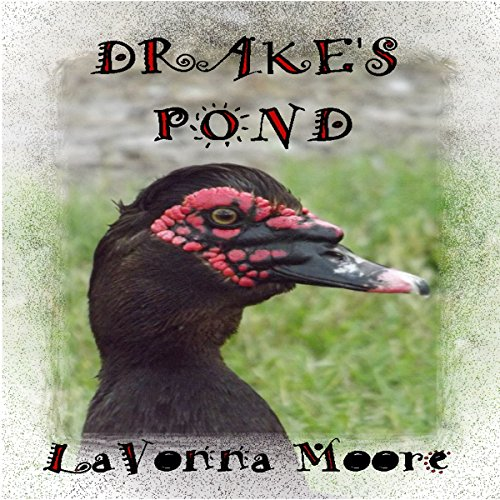 Drake's Pond audiobook cover art