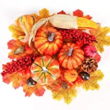 PACKAGE INCLUDED - 6 x Artificial Pumpkin (in different shapes and sizes), 1 x Artificial Corn, 2 x Red Berry Cluster, 5 x Mini Faux Pomegranate, 2 x Fake Chestnut, 2 x Mini Fake Acorn, 1 x Fake Pine Cone, 30 x Fake Maple Leaf. DIY SUPPLIES - Our var...