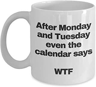 wtf mug - I hate mondays mug - funny coffee ceramic cup te tea for women men coworker - even the calendar says