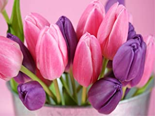 Pink Purple Tulip Diamond Painting - PigPigBoss 5D Full Diamond Painting by Numbers Tulip Diamond Embroidery Dots Kit Arts Crafts Painting for Adult (15.7 x 11.8 inches)