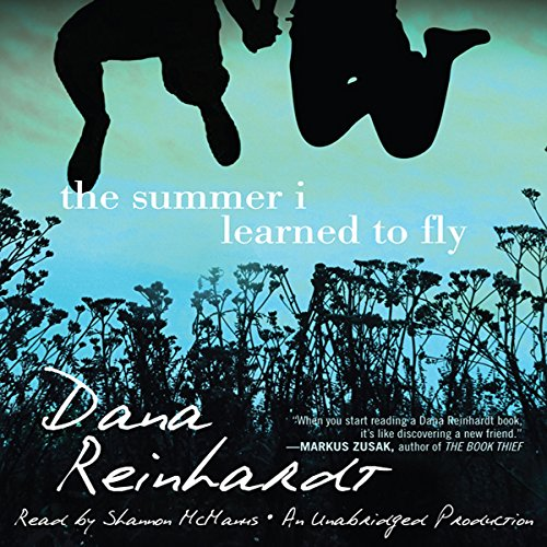The Summer I Learned to Fly audiobook cover art