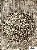 Weizen Landweizen 25kg Ernte 2019