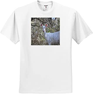 3dRose Danita Delimont ts/_312734 Iran Ancient Adobe Citadel Adult T-Shirt XL Rayen ARG E Rayen Southeastern Iran