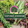 Nature's Answer Feverfew Supplement Alcohol Free 1 Fluid Ounce | Migraine & Headache Relief | Inflammation Reducer | Minor Pain Minimizer #5