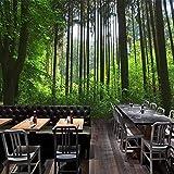 Tapeten Wandbilder,Grünen Wald Baum Gras Foto Anpassen Von