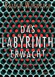 Rainer Wekwerth: Das Labyrinth erwacht
