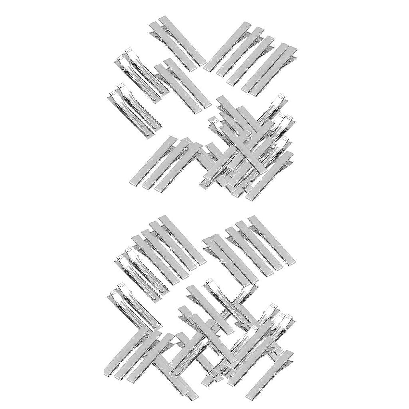 ラベアルミニウム相対性理論LUOSAI 女性DIYのヘアスタイル100pcsのためのスライバメタルプロングアリゲーターヘアクリップ46mm
