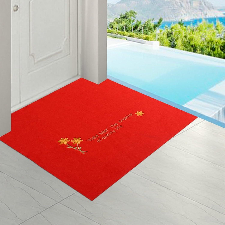 Doormats Water-Absorption Door mat Indoor mat for Bathroom Kitchen -B 100x160cm(39x63inch)