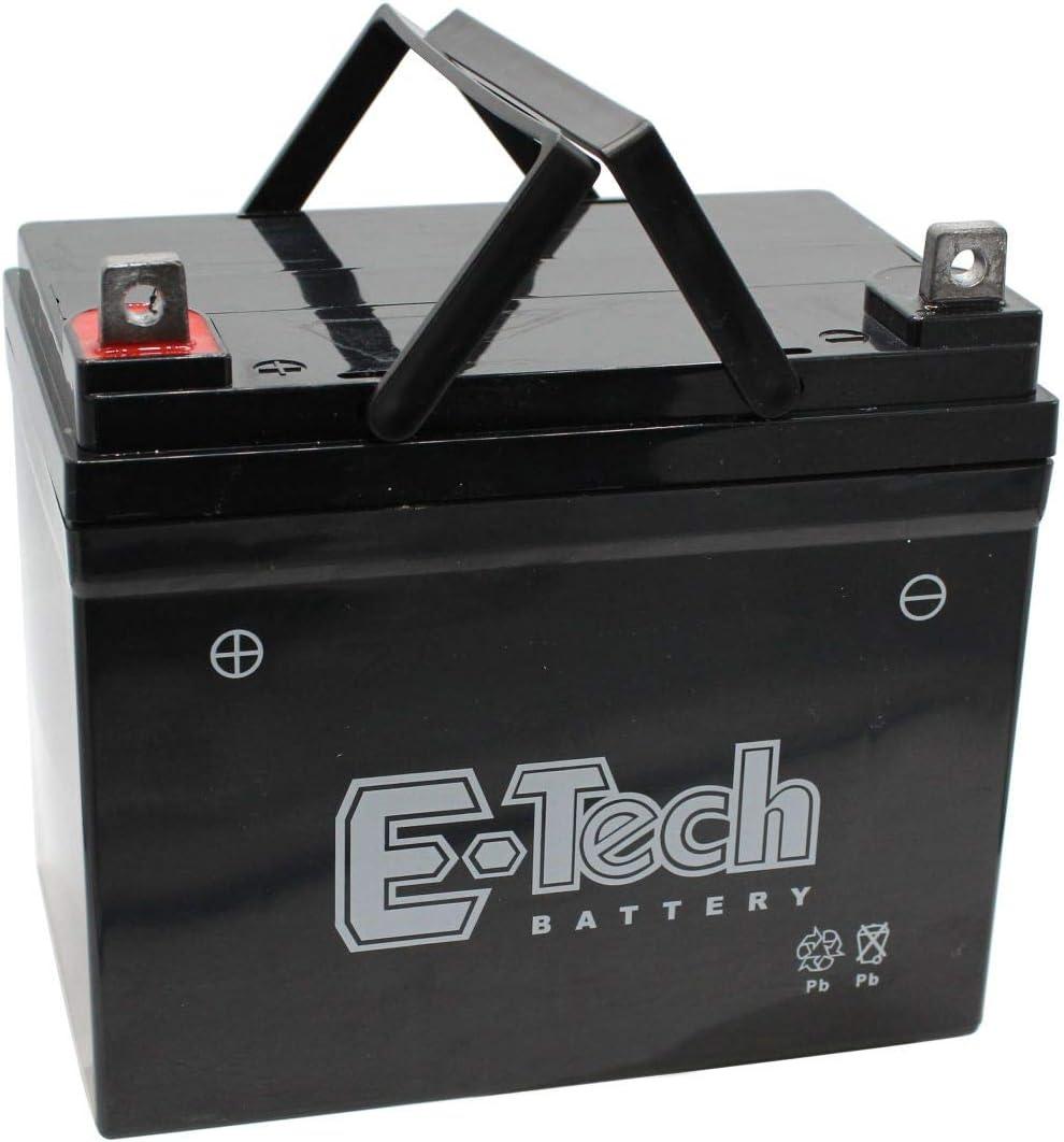 Batterien Garten sumicorp.com SECURA Batterie 12V 22Ah + Pol ...