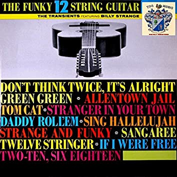 The Funky 12 String Guitar