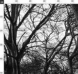 Baum, Zweige, Natur, Schwarz Und Weiß Stoffe - Individuell