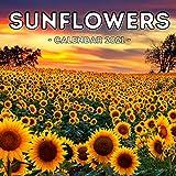 Sunflowers Calendar 2021: Cute Gift Idea For Sunflowers Lovers Men And Women