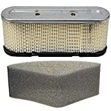 Maxpower 334315 Air Filter/Pre-Filter Replaces Tecumseh 35403 (filter) and 35404 (pre-filter)