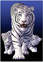 Mural Cute White Tigers Family Art Canvas Painting on The Wall Canvas Posters and Prints Wall Art Picture for Living Room ...