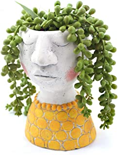 Best planters with faces Reviews
