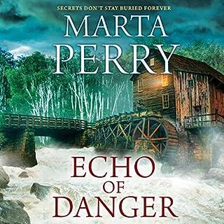 Echo of Danger audiobook cover art