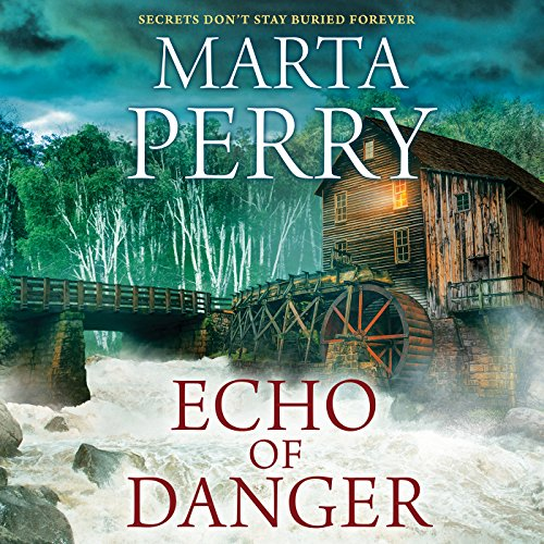Echo of Danger audiobook cover art