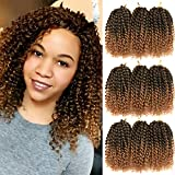 8 Inch Passion Twist Hair Short Marlybob Crochet Hair 9 Bundles/Lot Synthetic Ombre Braiding Hair Extensions Small Afro Kinky Curly Twist Braid(1B/27)