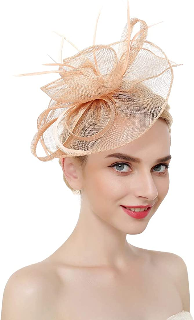 Stevally Fascinator Hat Feather Mesh Net Veil Party Hat Flower Derby Hat with Clip and Hairband for Women