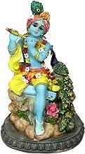 Best peacock god hindu Reviews