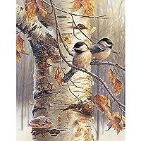 フルドリルスクエアダイヤモンド5DDIYダイヤモンド絵画「枝の鳥」ダイヤモンド刺繡クロスステッチラインストーンモザイク絵画