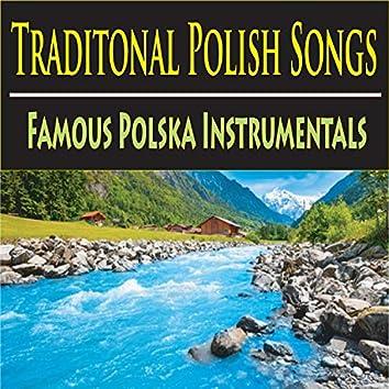 Traditional Polish Songs (Famous Polska Instrumentals)