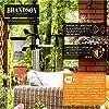 Brandson - Station météo sans fil avec capteur extérieur 7en1, weather station connectée WiFi, prévisions météorologiques via APP, anémomètre, pluviomètre, thermomètre, hygromètre, baromètre,heure DST #2