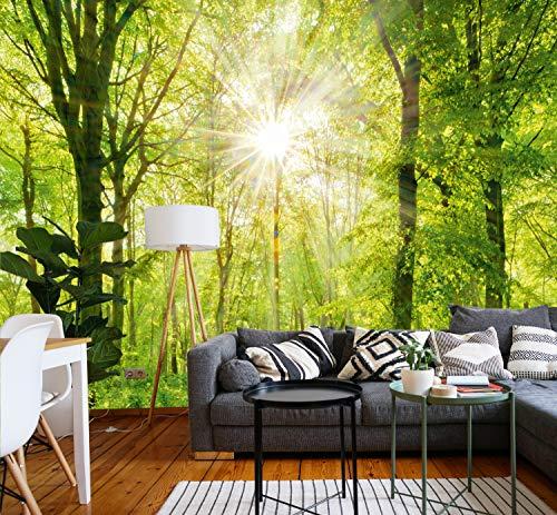 Murimage fotobehang bos 3D 274 x 254 cm bomen zon inclusief lijm voor woonkamer slaapkamer keuken