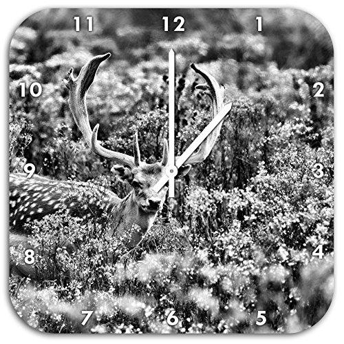 Monocrome, cerfs axe magnifique sur la prairie sauvage, diamètre horloge murale 48cm avec le blanc a les mains et le visage, des objets de décoration, Designuhr, composite aluminium très agréable pour salon, bureau