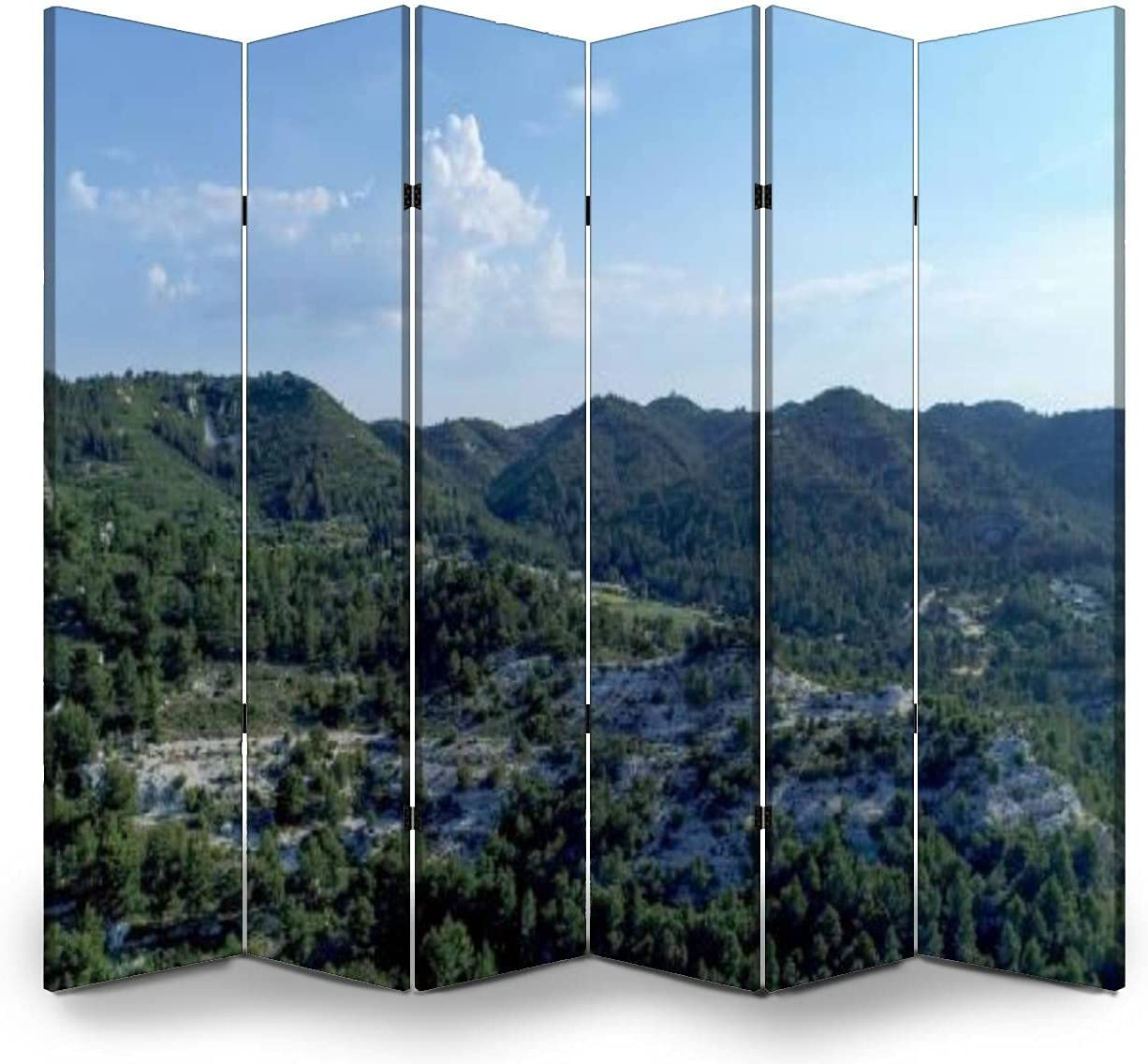 6 Panel Screen Room Divider Massive des Inexpensive in Alpilles the Ranking TOP18 of heart