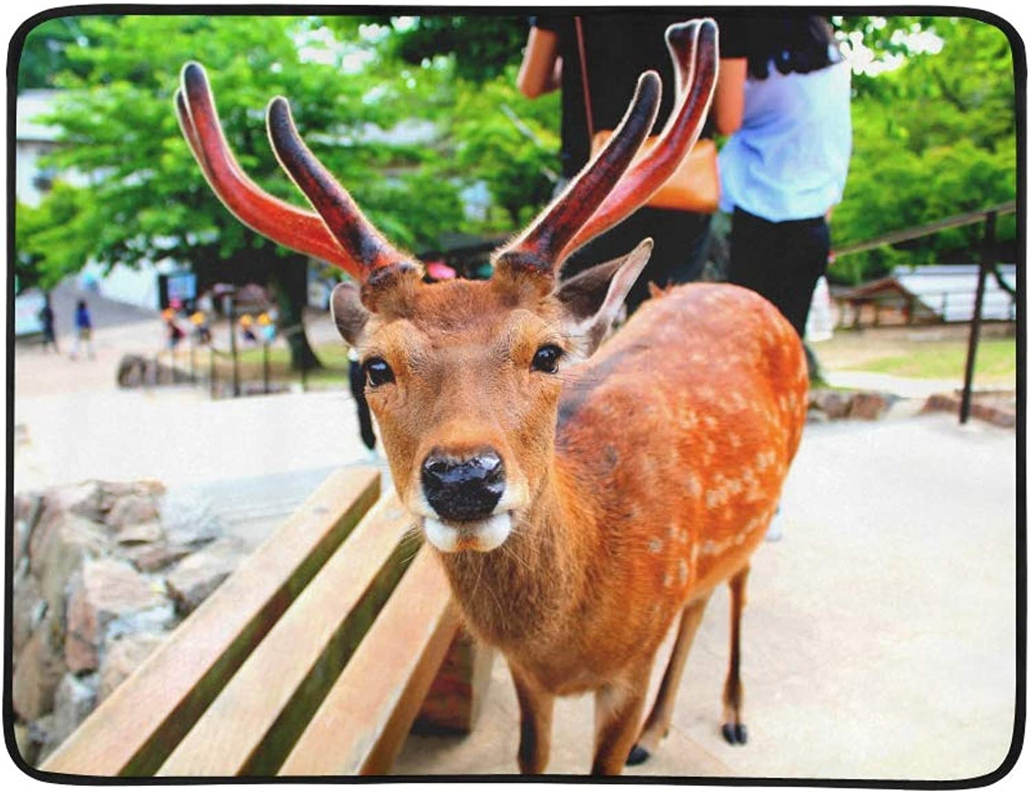 A Cute Nara Deer with Antlers Gazes Into The Camer Pattern Portable and Foldable Blanket Mat 60x78 Inch Handy Mat for Camping Picnic Beach Indoor Outdoor Travel