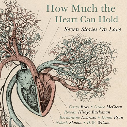 How Much the Heart Can Hold audiobook cover art